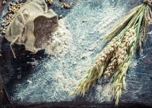 «Живой» талкан: польза и вред муки из пророщенного зерна