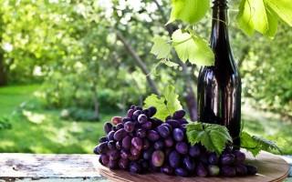 Полезные свойства кагора, противопоказания и рецепты лечения
