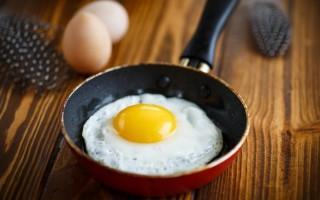 Польза и вред цесариных яйц: белок, желток и скорлупа цесарки в рационе