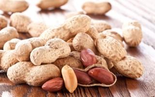 Полезные свойства арахиса и ряд противопоказаний
