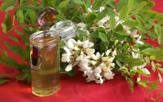 Полезные свойства меда белой акации и возможные противопоказания