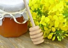Польза и вред рапсового мёда с высоким содержанием глюкозы