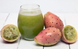 Польза сока из плодов кактуса
