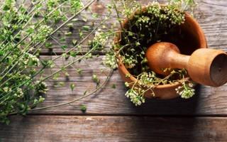 Лечебные свойства пастушьей сумки и противопоказания