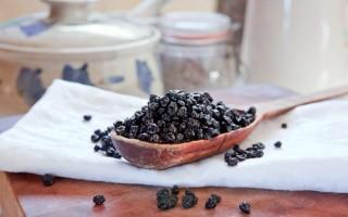 Сушеная черника: полезные свойства, противопоказания и применение