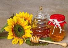 Подсолнечный мёд – полезные свойства солнышка в банке