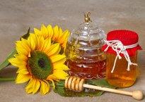 Подсолнечный мёд – полезные свойства солнышка во банке