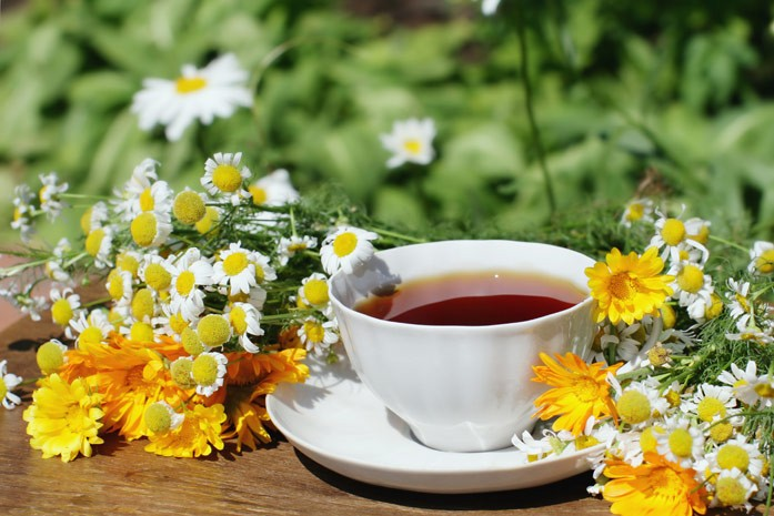 чашечка чая на травах