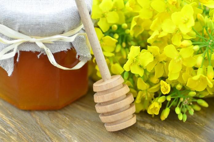 рапс и мед в баночке