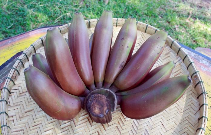 красные бананы