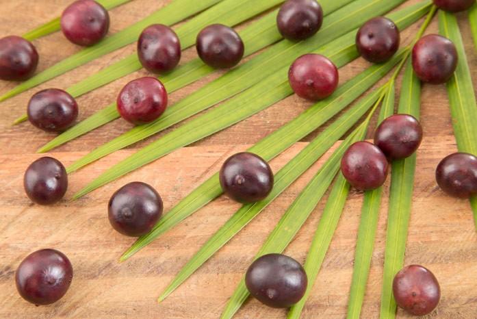 плоды пальмы асаи