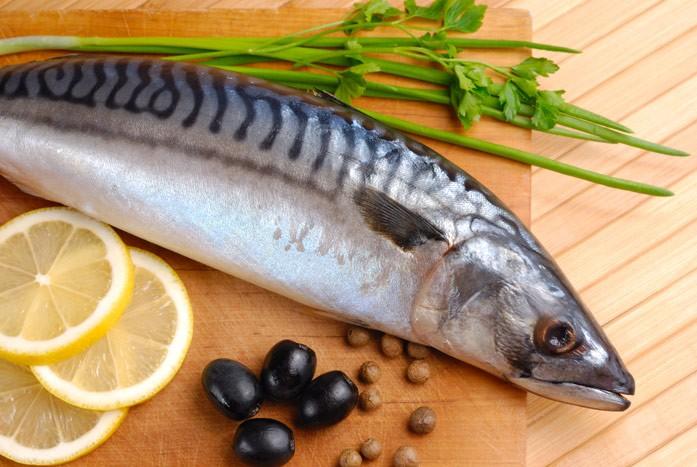 Скумбрия: полезные свойства и противопоказания рыбы