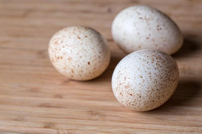 Яйца индюшки: польза и вред, едят ли индюшиные яички?